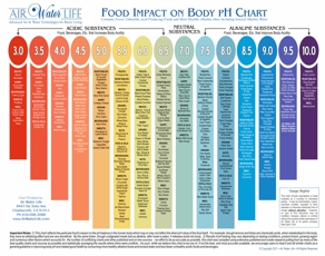 Chart of Various Foods' Impact on the Human Body's pH Balance